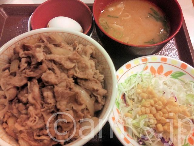 メガ牛丼、とん汁サラダセット、たまご@すき家
