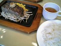 sengoku_hongou3_shl061008