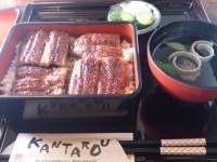 20130531_kantarou_tenryugawa_unaju