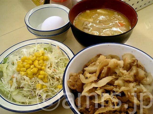 豚めし豚汁セット(並)、生野菜 by 松屋