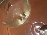 20141218_tavernagustavino_ginza1_champagne