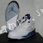 AIR JORDAN 5 RETRO GRAPE