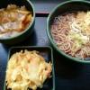 朝定食カレー丼、かき揚げ@ゆで太郎