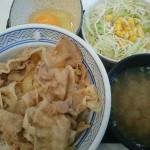 豚丼(アタマの大盛)、Aセット(生野菜サラダ+みそ汁)、玉子@吉野家