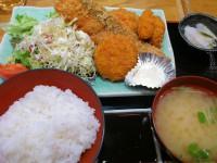 20130110_hokkaidouyakumotyou_mitukosimae_mixfly