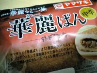 yamazaki_kreip070204