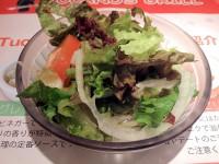 20130906_tucanosgab_akihabara_sarada