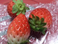 20131225_famima_xmascake_strawberry