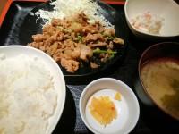 20150428_sanizu_tokyo_pirikarapork