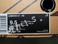 leBron11_as_box