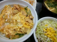 20150717_nakau_lunch_oyakodonsarada