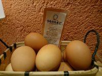 20160614_utinotamagoyaakasakabiz_akasaka_egg