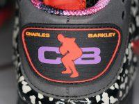 "NIKE BARKLEY POSITE MAX PRM QS ""AREA 72"""