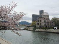 広島乃風 平和公園前店 広島県 広島市 原爆ドーム 桜