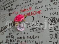くるくる@東京都八王子市 ダーイシ人形 木梨憲武氏のペレ サイン