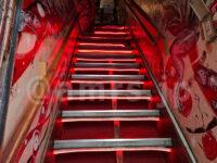 すごい煮干ラーメン凪 新宿ゴールデン街店 本館@東京都新宿区 名物急な階段
