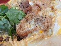 得朝親子丼セット (選べる小鉢 冷奴)@松乃家・松のや ゴロゴロ 鶏肉